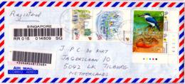 SINGAPORE  2000  COVER To HOLLAND      BIRD   CRAB - Singapore (1959-...)