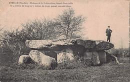 DOLMEN Et MENHIR - Dolmen De La Frébouchère  , A Avrillé ( Vendée ) - Dolmen & Menhire