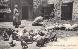 EN LIMOUSIN - UNE FERME - ANIMAUX DE LA FERME - France
