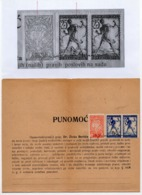 31.01.1920. KINGDOM OF SHS, CHAIN BREAKERS, VERIGARI, ZEMUN, 2 STAMPS WITH ERROR, POSTAL STAMPS AS REVENUE - 1919-1929 Kingdom Of Serbs, Croats And Slovenes