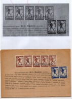 24.02.1919. KINGDOM OF SHS, CHAIN BREAKERS, VERIGARI, ZEMUN, 6 STAMPS WITH ERROR, POSTAL STAMPS AS REVENUE - 1919-1929 Kingdom Of Serbs, Croats And Slovenes