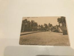 Dendermonde - TERMONDE Entrée De La Ville ( 1911 ) - Phot H. Bertels - Dendermonde