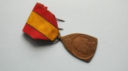 HERINNERINGSMEDAILLE V/d VELDTOCHT 1914 - 1918 ( E.J. De Bremaecker ) ( Te Identificeren +/- 22,5 Gr. ) ! - Belgium