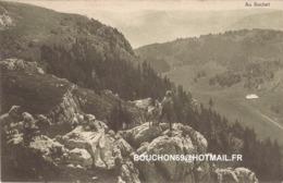 Suisse - Vaud - Suchet Ziege Chevre Goat - VD Vaud