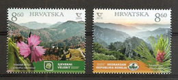 CROATIA 2019, JOINT ISSUES CROATIA-KOREA,FLORA,TREES,PINUS PUMOLA,VELEBIT ,MNH - Kroatien