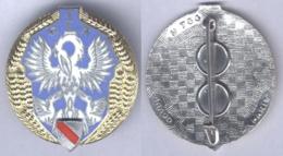 Insigne Du 1er Groupe De Livraison Par Air - Armée De Terre