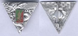 Insigne Du 2e Régiment Etranger De Parachutistes - Armée De Terre