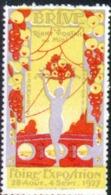 Erinophilie, Vignette De La Foire Exposition De Brive Du 28 Aout Au 4 Sept 1927 - Erinnofilie