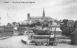 België  Henegouwen  Lobbes   Vue Prise De L'hôtel De M. Dejardin      L 1017 - Lobbes
