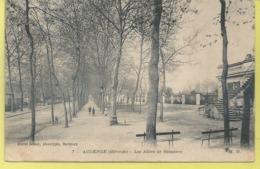 D33 - BASSIN  D'ARCACHON  - Les Allées De BOISSIERE - France