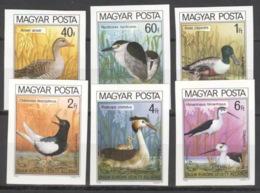 Ungarn 3451/56B ** Postfrisch Vögel - Ungebraucht