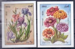 1998 IRAQ 2 Souvenir Sheets MNH S.G.No.2032-2033 - Iraq