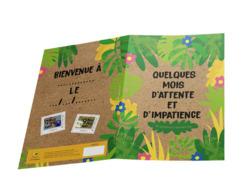 France 2019 - Collector -  Quelques Mois D'attente Et D'impatience - Naissance - 9 Mois Plus Tard ** (sous Blister) - Frankrijk