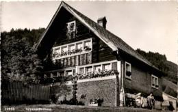 Appenzellerhaus (12885) - AI Appenzell Innerrhoden