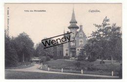 Cappellen (villa Des Hirondelles) Uitg. Hoelen N° 3345 - Kapellen