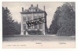 Cappellen (Heidehof) Uitg. Hoelen N° 1704 - Kapellen