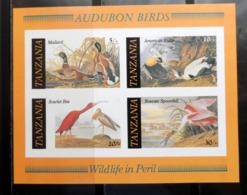 OISEAUX Aubudon   TANZANIE    NEUF Sans Charnière   N° BF45   N**   NON DENTELE  Cte: 9,50  € - Vogels