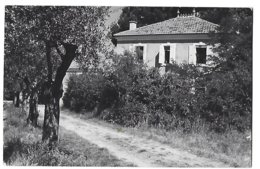 84 - VALRÉAS - Villa Des Oliviers - 1954 - Valreas