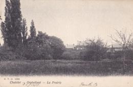 Châtelet  Orphelinat La Prairie D.V.D 11806 Circulée En 1904 - Chatelet