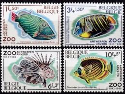 1968, Belgien, 1527/30,  MNH **, 125 Jahre Zoo Antwerpen: Fische. - Belgio