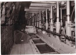 Bochum - Deutsches Bergbau-Museum: Anschauungsbergwerk, Waizenladerstreb Mit Schreitendem Ausbau - Bochum