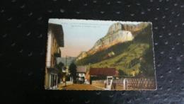 LE PETIT-BORNAND (Htes-Savoie) - Les Rochers De Leschaux - Frankrijk