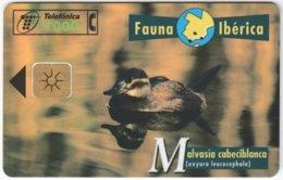 SPAIN B-305 Chip Telefonica - Animal, Bird, Duck - Used - Ohne Zuordnung