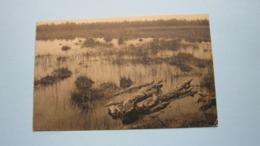 LIERMAN Oud Turnhout ( Ed. Nels ) Anno 1933 ( Zie Foto Details ) ! - Oud-Turnhout