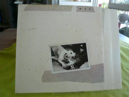Fleetwood Mac X2 33t Vinyle TUSK - Disco & Pop