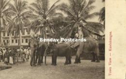 Straits, Malay Malaysia, KUALA KANGSAR, Perak, Elephants (1910s) Postcard - Malaysia