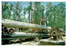 Ref 1330 - Postcard - The Bush Mill - Port Arthur Tasmania Australia - Port Arthur