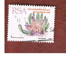 SUD AFRICA (SOUTH AFRICA) - SG 778 - 1993   SUCCULENTS: STAPELIA GRANDIFLORA   - USED - Usati