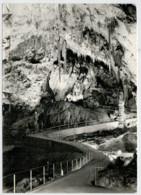 POSTOJNSKA  JAMA         (NUOVA) - Jugoslavia
