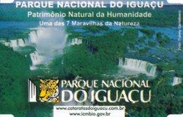 Brasilien Iguacu Eintrittskarte 2015 Iguacu Wasserfälle Nationalpark UNESCO Welterbe - Eintrittskarten