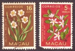 Macau 1953 - Indigenous Flowers - Macao
