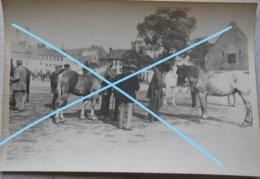 Photo SAINT OMER ? Marché Aux Chevaux Cheval Paard Horse Fin 19èmes Début 20ème S - Lieux