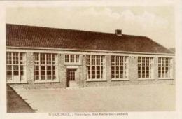 SINT-KATHERINA- LOMBEEK - Nieuwlaan - Wijkschool - Ternat