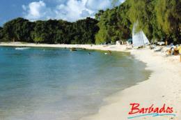 1 AK Barbados * West Coast Beach * - Barbades