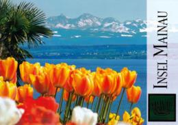 1 AK Germany Baden-Württemberg * Tulpenblüte Auf Der Insel Mainau * - Konstanz