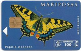 Spain - Telefónica - Mariposas - Papilion Machaon Butterfly - P-187 - 03.1996, 100PTA, 5.000ex, Used - España