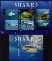 Niuafoou - 2019 - Sharks - Mint Stamp Sheetlet + Souvenir Sheet - Sellos