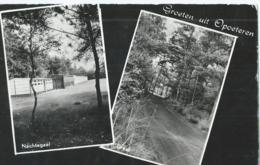 Opoeteren - Groeten Uit Opoeteren - Nachtegael - Dreef - 1975 - Maaseik