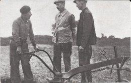 AGRICULTURE - TRAVAUX DES CHAMPS - CHARRUE - TBE - Landbouw