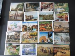 LOT   DE   360   CARTES  POSTALES     REPRODUCTIONS    DE   TABLEAUX - Cartes Postales