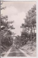 ILE D'OLERON (17) : ROUTE DE LA GRANDE PLAGE DE SAINT TROJAN - 203 PEUGEOT ET GROUPE D'ENFANTS - ECRITE 1957 -z R/V Z- - Ile D'Oléron