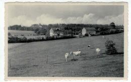 Havelange - Méan - Ed. Roumache Arsène - L'Hôtel - Nels - Havelange