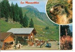 74110 MONTRIOND - Hameau LES LINDARETS - Restaurant Les Marmottes - Other Municipalities