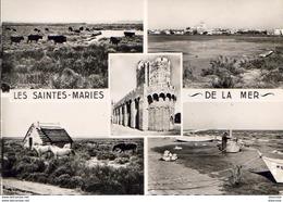 D13  SAINTE- MARIE- DE- LA- MER  Vue Générale  ... - Saintes Maries De La Mer