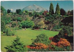 Vancouver - Queen Elizabeth Park, Bloedel Floral Conservatory - (B.C., Canada) - Vancouver
