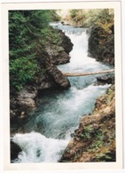 Vancouver Island - Little Qualicum Falls - (B.C., Canada) - Vancouver
